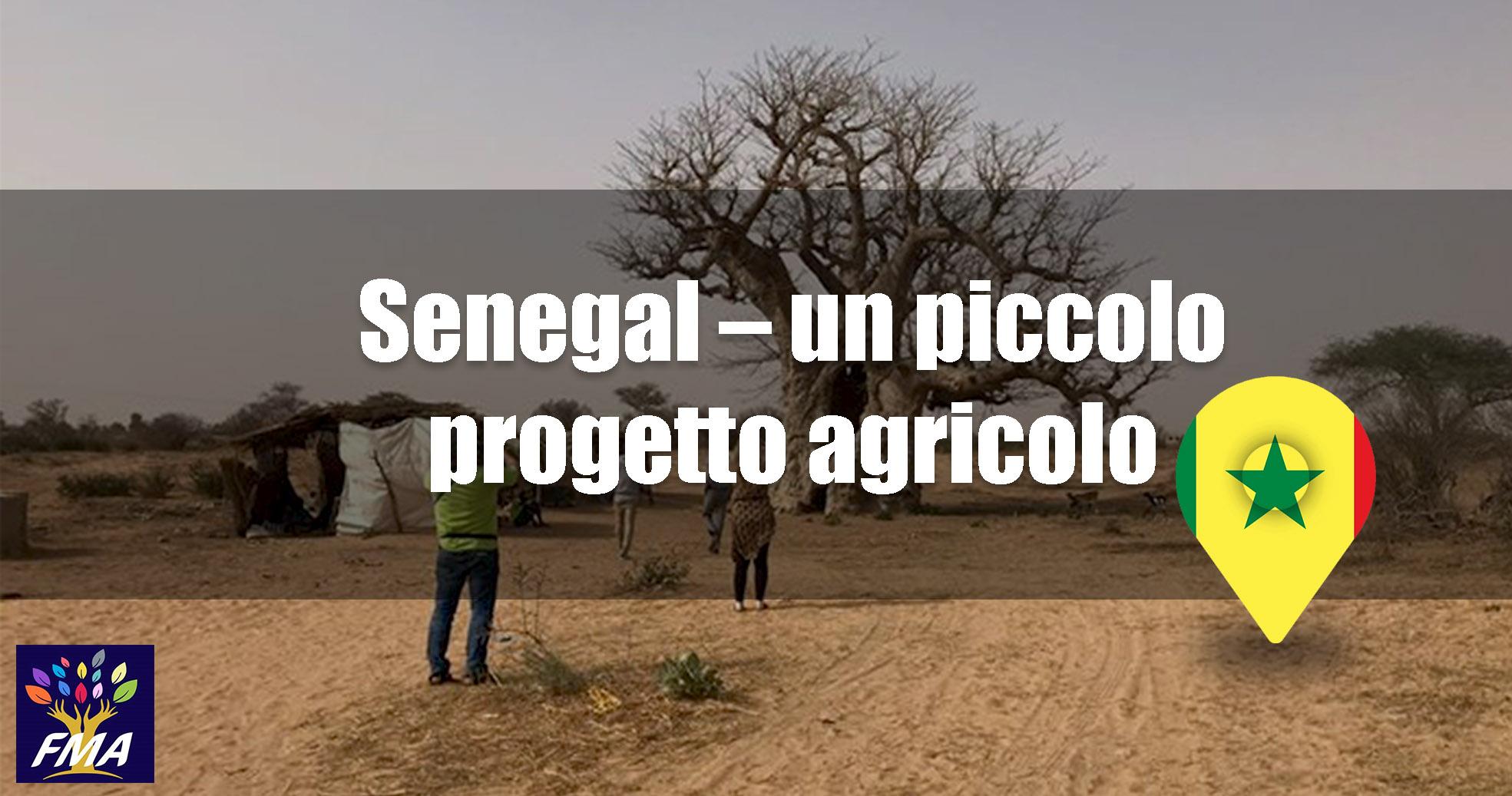 Senegal – Un piccolo progetto agricolo