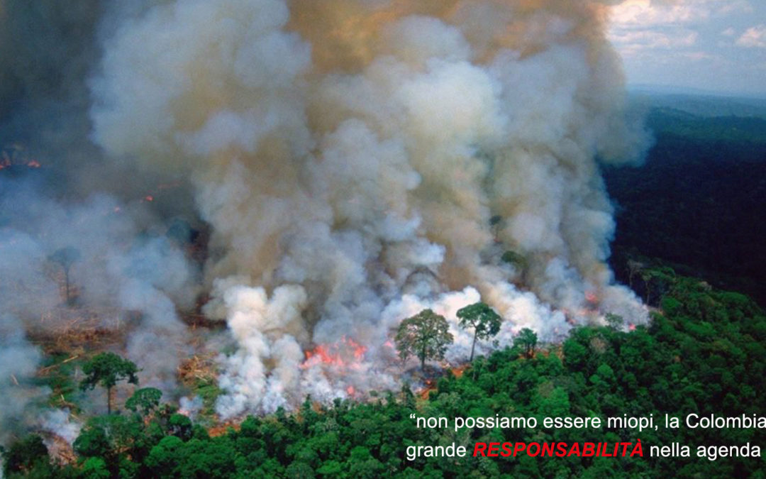 Un Sinodo sull'Amazzonia