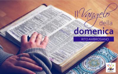 5^ Domenica dopo Pentecoste